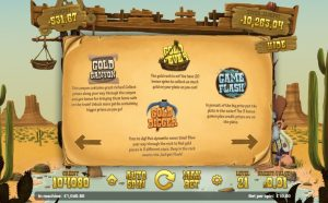 Gold Rush Features Info